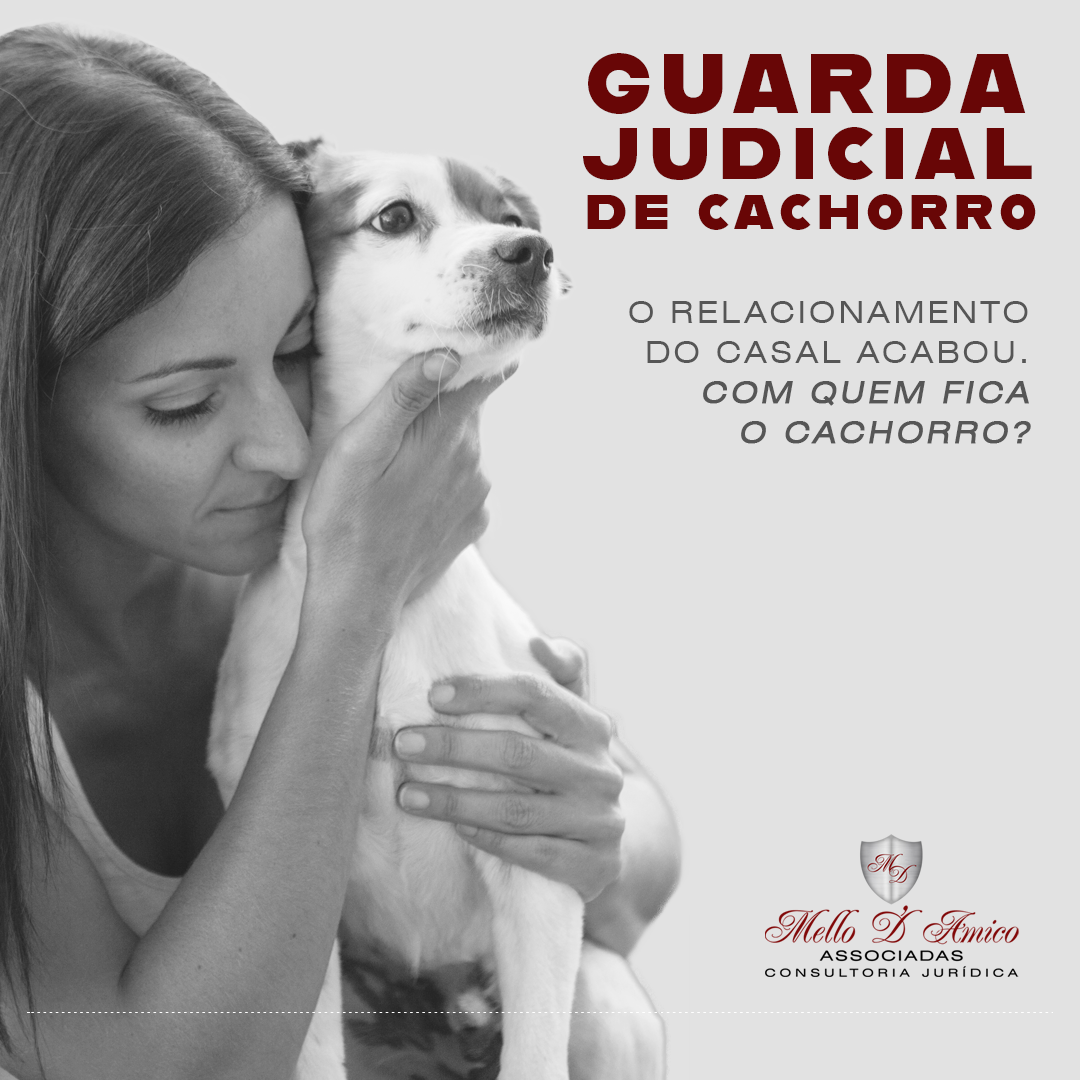 guardacachorro